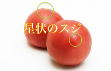 140529-PHY009-tomato-21.39.47